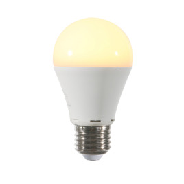 LED-Glühbirne mit LED-Light 12Watt E27 (warmes Licht)